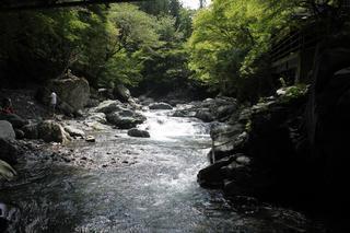 【川遊び・関東】初心者必見!子供と一緒に『渓流釣り』にチャレンジ!イワナ・ヤマメ・ニジマスを釣ろう