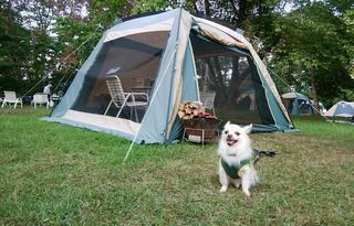 【北海道ペット可のキャンプ場】北海道でペットと一緒に泊まれるキャンプ場おすすめ5選