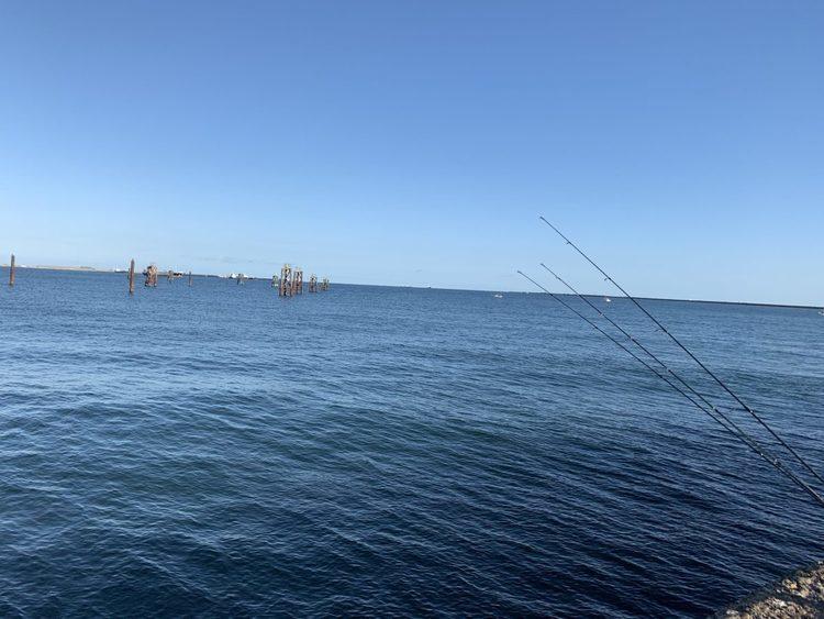 都内から100kmで太平洋!初めての鹿島港魚釣園へ
