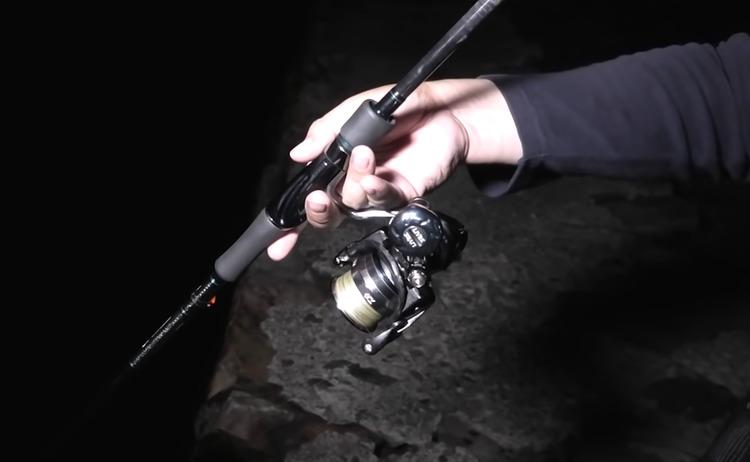エギングを夜楽しむにはどうすればいいの?釣り方やおすすめタックルをチェック
