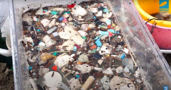 ほのぼのビーチ茅ヶ崎 〜砂浜のマイクロプラスチック回収実験プロジェクト〜