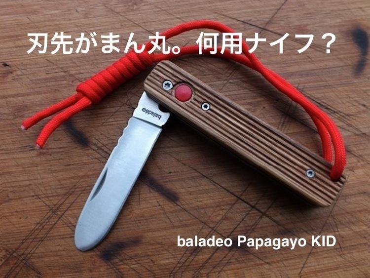 【何用?】ナイフにしては刃先が丸くて、しかもなんだか可愛い。