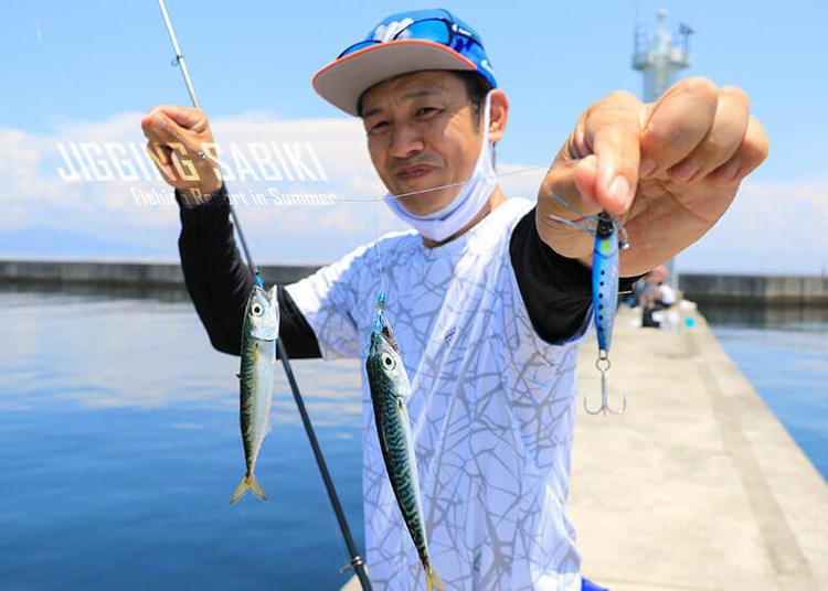 堤防ジギングサビキの基本を押さえて実釣! 「実際のところ釣れるの?」を体験してみた!!