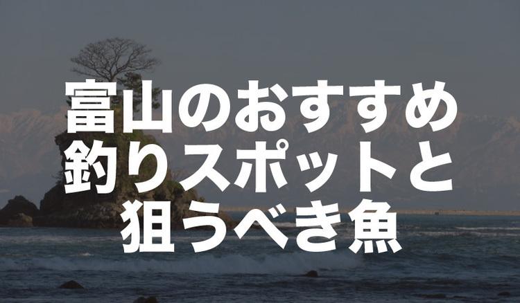 富山県の釣り場情報 アジ、アオリイカ、キジハタなど狙う魚別に解説!