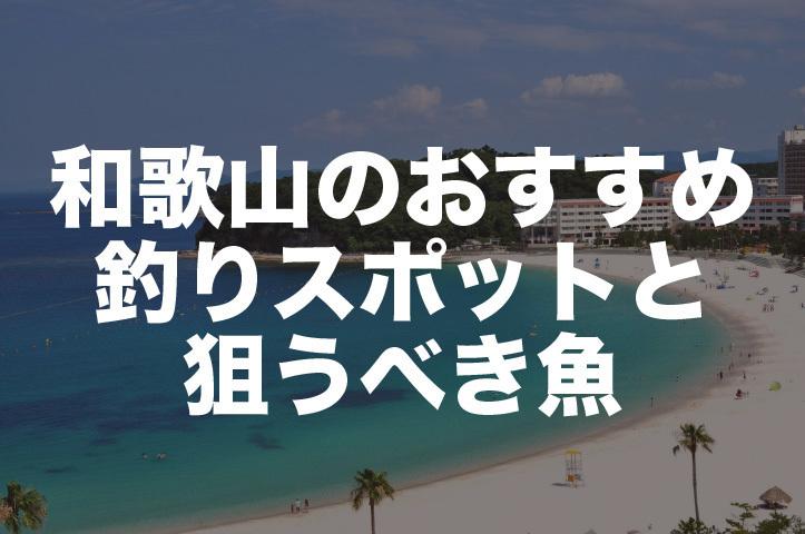 和歌山県の釣り場情報 アオリイカ、青物ポイントから車横付OKまで