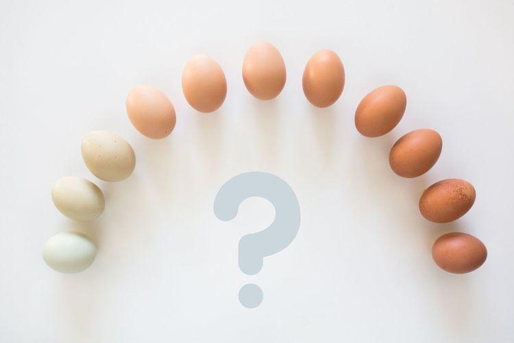 完全栄養食「卵」に足りない栄養素とは。補うべきはこの2つ
