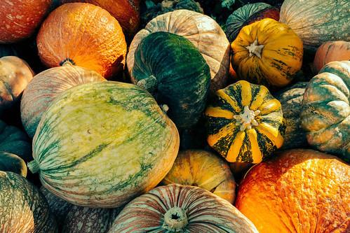 甘くてホックホク!旬のかぼちゃで秋のキャンプ料理