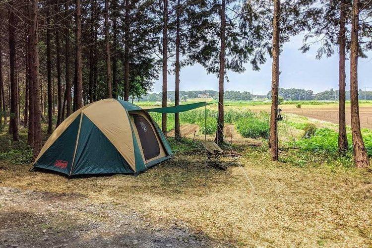 【PICK UP】10月のなっぷおすすめキャンプ場