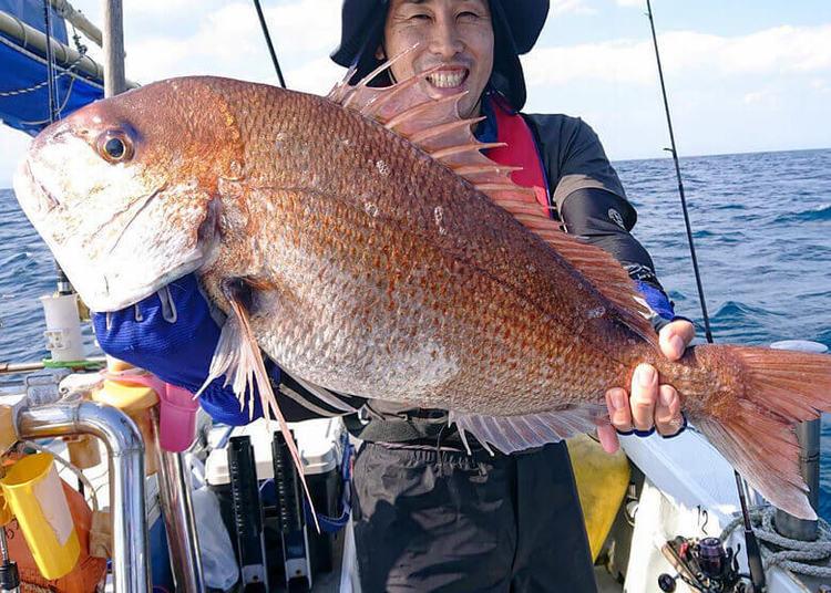 仙台湾マダイチャレンジ! 実釣で見えてきた仙台湾マダイの現状とタックルセッティング