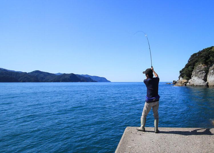アオリイカの釣り方! イカのアタリってどう取るの?