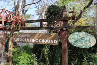 千葉県山武市「有野実宛オートキャンプ場」!ファミリーにおすすめ&人気 高規格設備・イベントが充実