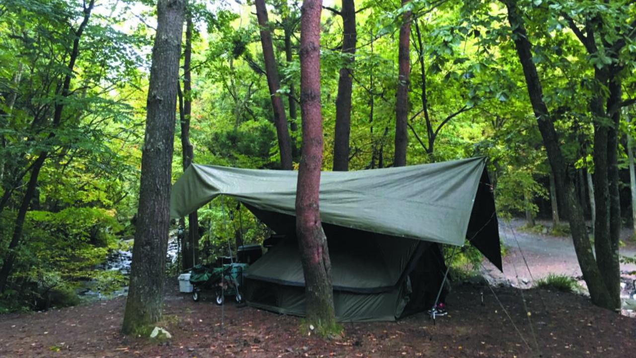 【キャンプ場情報】人気のキャンプ場『道志の森』キャンプ場へいってみました!