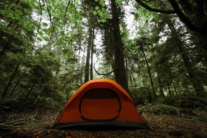 指でこすると穴が塞がる?近未来の自己修復テント「Nano Cure Tent」