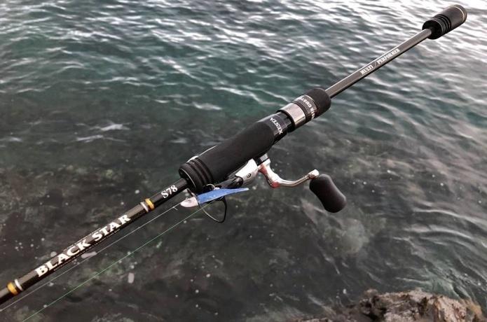 ライトワインドは反則釣法か!?海のライトターゲットを一網打尽にする釣り方を解説