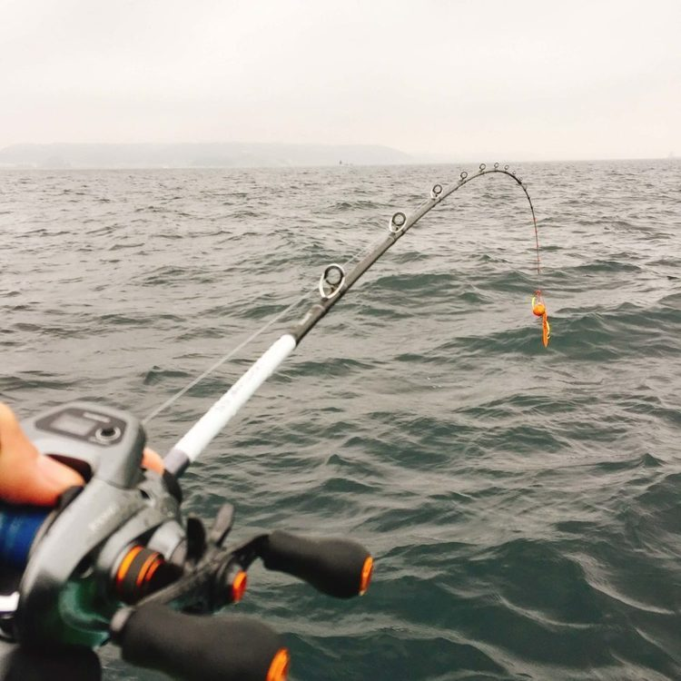 俺氏、父の威厳をかけてお食い初めの真鯛を釣るの巻(東京湾のタイラバ・一つテンヤ)@金沢八景・野毛屋