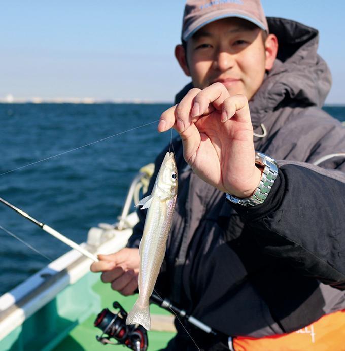 好調が続く東京湾のシロギス 明確なアタリと引きが楽しいよ!