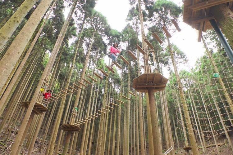 木から木への空中散歩が体験できる!『フォレストアドベンチャー・湯の山』が2019年3月16日オープン!