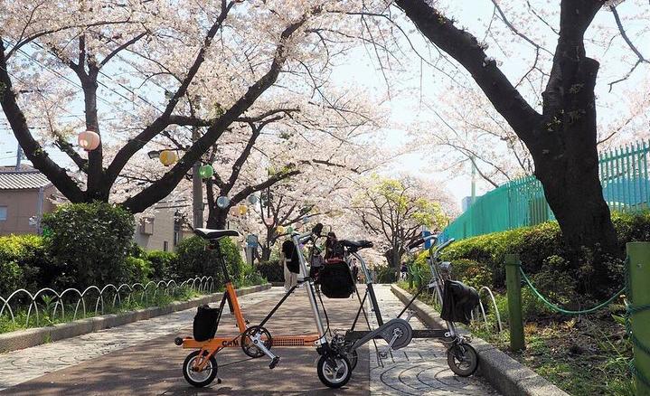 桜が似合う自転車「ミニベロ」の素敵な風景写真ピックアップ50【2019春】