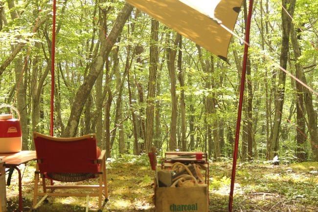 やっと出会えた究極のキャンプ場