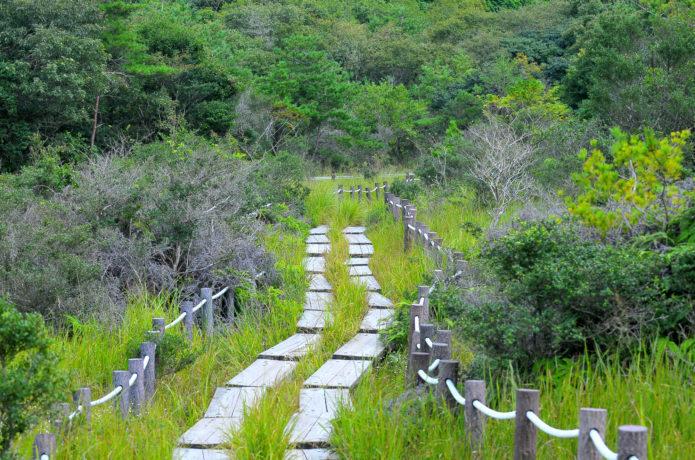 葦毛湿原|「東海のミニ尾瀬」と周囲の山々をめぐる登山コース