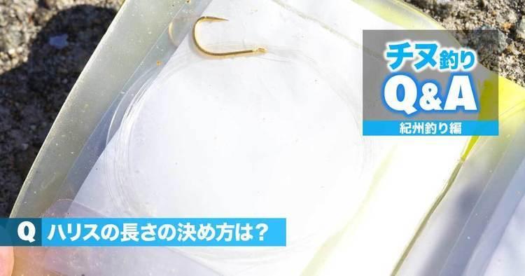 チヌ・紀州釣りの悩みを解決!!|ハリスの長さの決め方は?