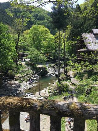【おすすめキャンプ場02】暑さも忘れて川遊び!緑あふれる大自然の中の「木のむらキャンプ場」