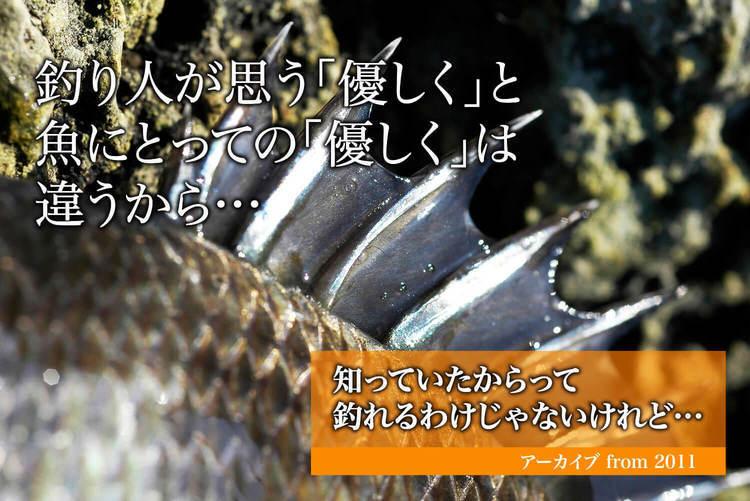 釣り人が思う「優しく」と魚にとっての「優しく」は違うから…|知っていたからって釣れるわけじゃないけれど…《アーカイブ from 2011》