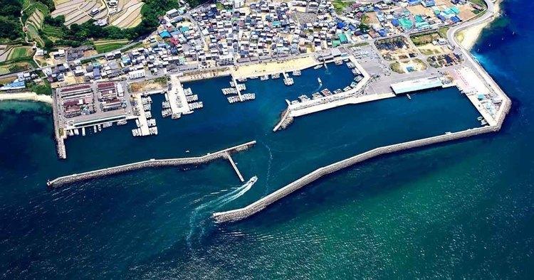 フィールドガイド 育波漁港