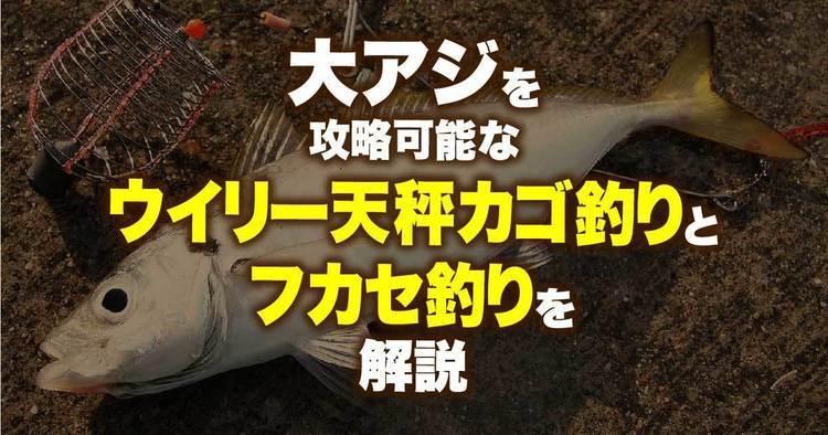 大アジを攻略可能なウイリー天秤カゴ釣りとフカセ釣りを解説