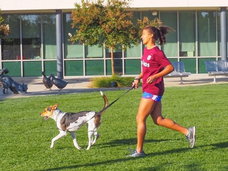 「毎日走らなくてもいい。速く、長くも」海外のランニング文化に触れる#2【アメリカ】