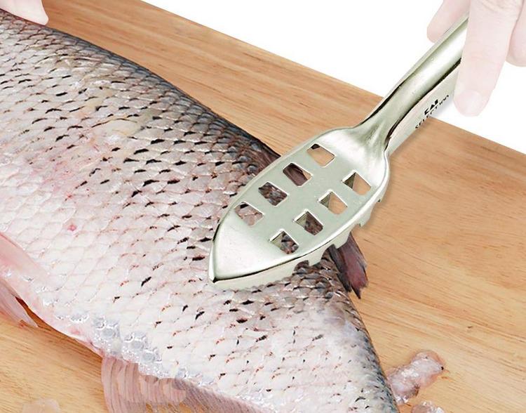 ウロコ取り特集!釣った魚のウロコをキレイに取るためのおすすめアイテム