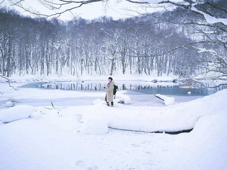 日本有数の豪雪地帯で道なき道を切り開くアクティビティ『冬の八甲田 大自然迷路』が開催!