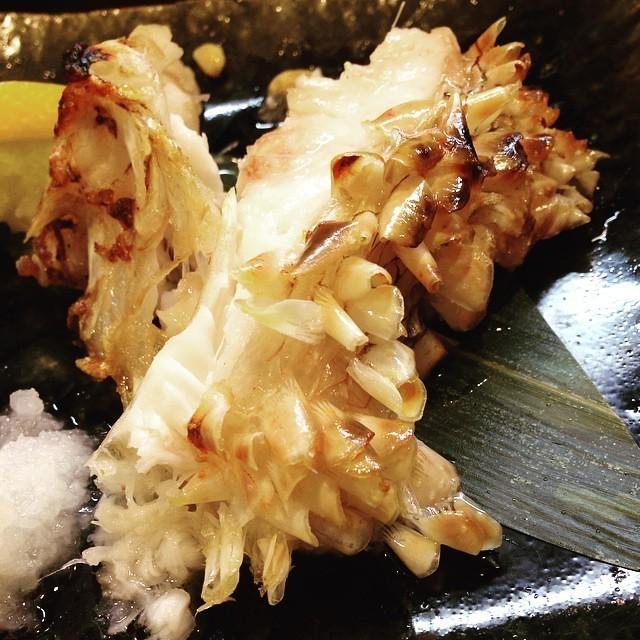 幻の高級魚「白甘鯛」!釣り方と美味しい料理をまとめてチェック!
