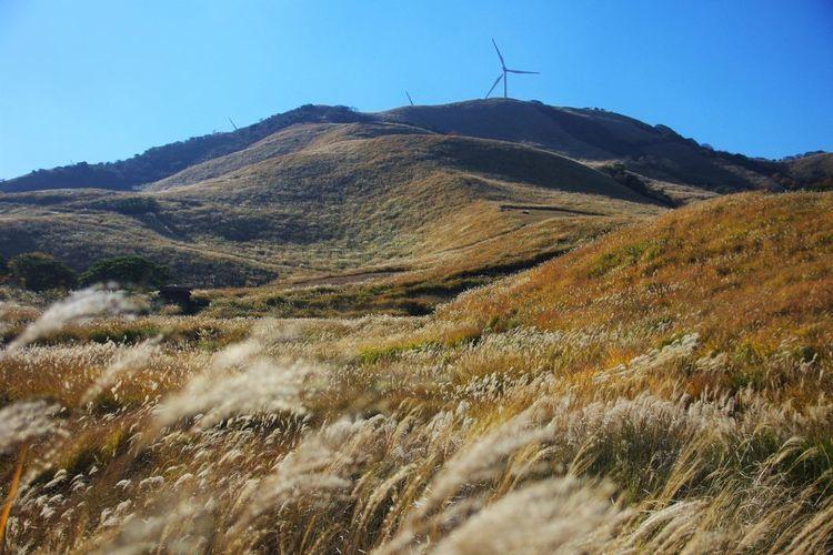 忘れがたいあの道を、もう一度|#20 静岡県・三筋山、相模灘と天城山を眺め歩くゴールデントレイル