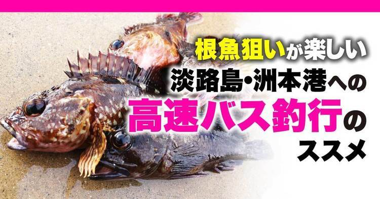 根魚狙いが楽しい淡路島・洲本港への高速バス釣行のススメ