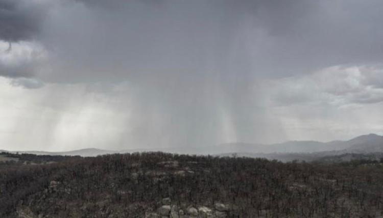 恵の大雨と洪水被害 過去最大規模のオーストラリア森林火災への募金動画
