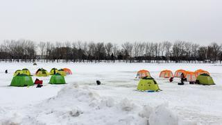 【雪中キャンプ】テント設営の注意点と信頼の「ogawa/コールマン」のおすすめテント2選