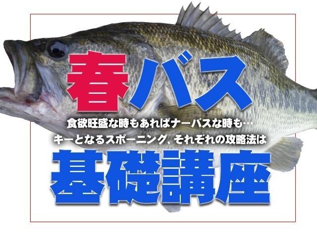 春のバス釣り基礎講座