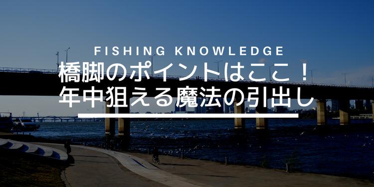 みんな大好き河川橋脚シーバス攻略。橋脚の魚がついている場所はここだ