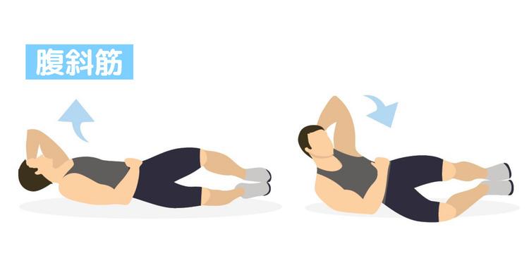 お腹の横にある筋肉「腹斜筋」の鍛え方。おすすめ筋トレメニューと効果を高めるポイント