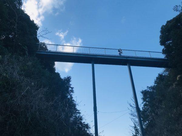 『WILD KIDS岬オートキャンプ場』で南房総を満喫!