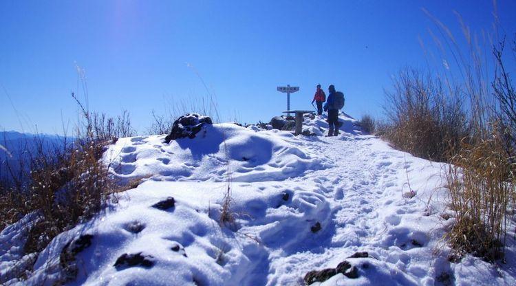忘れがたいあの道を、もう一度|#24 長野県・守屋山、太陽の似合う絶景山頂へと続く神体山のスノートレイル