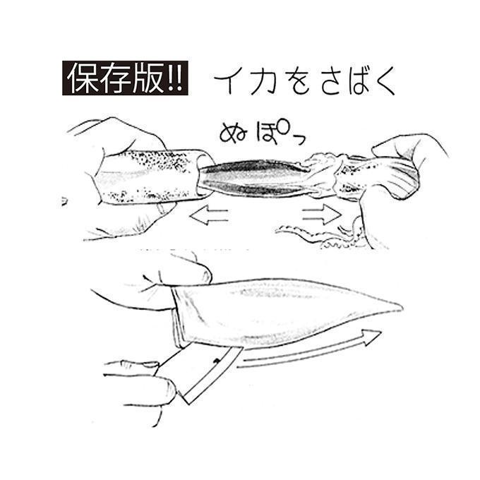 保存版!!釣り人のための 魚のさばき方!イカをさばく!