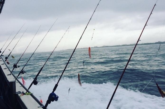 【堤防&船】タコ釣りにおすすめのロッドを元釣具屋が厳選!