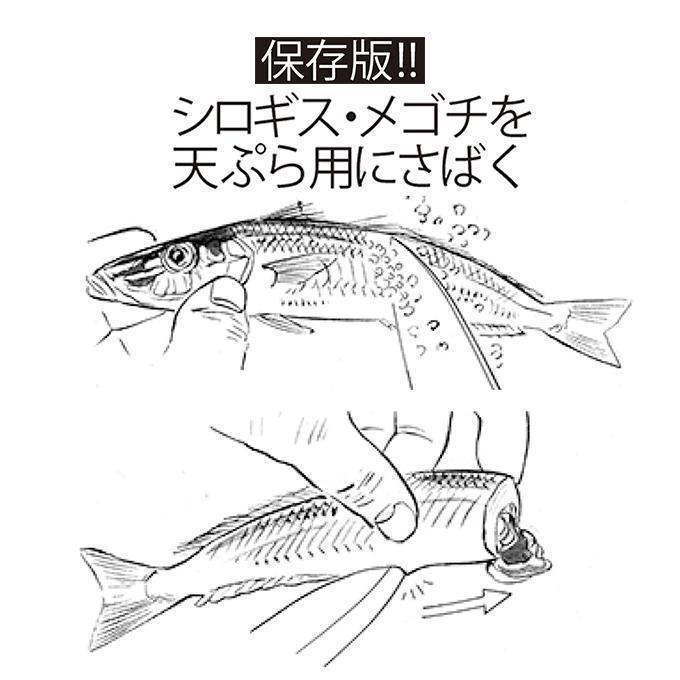 保存版!!釣り人のための魚のさばき方!シロギス&メゴチをさばく