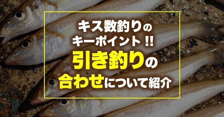 キス数釣りのキーポイント!! 引き釣りの合わせについて紹介
