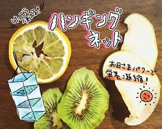 【ドライフルーツの作り方】ハンギングドライネットで簡単! 干物&干し野菜も