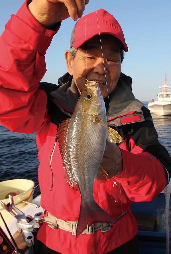 極上の美味魚!イサキをウイリーで釣ろう!東京湾口 剣崎沖
