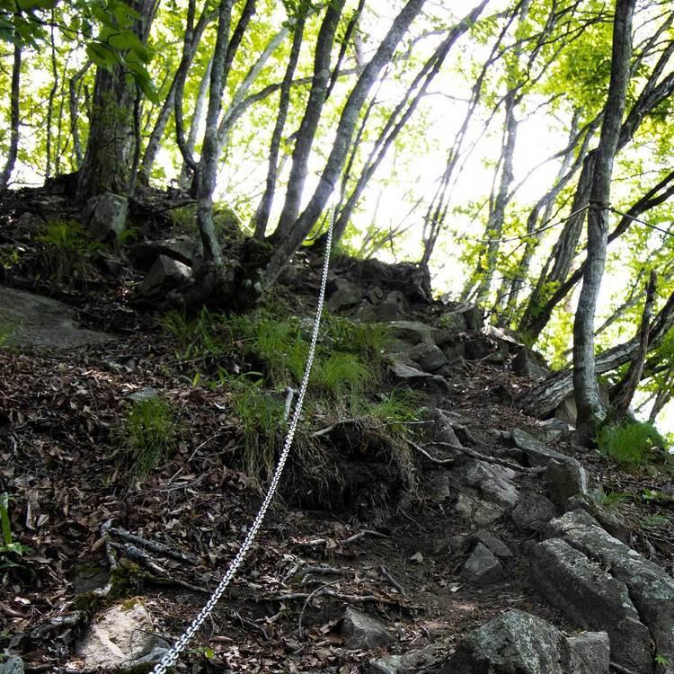 明覚山 登山 緑が豊富な初夏の里山を登る