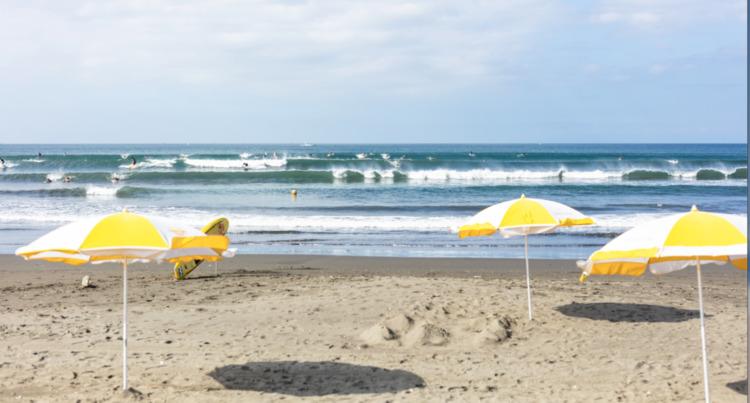 今夏の海岸利用に関し「夏期海岸藤沢モデル 2020」の運用が決定